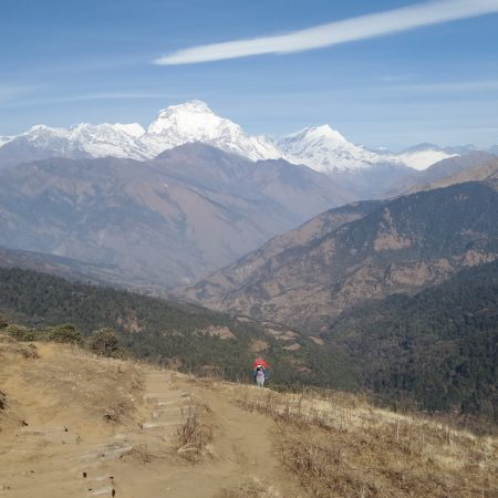 On the way to Ghorepani