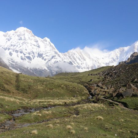 Grassland in Annapurna region