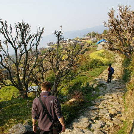 Tangting Village